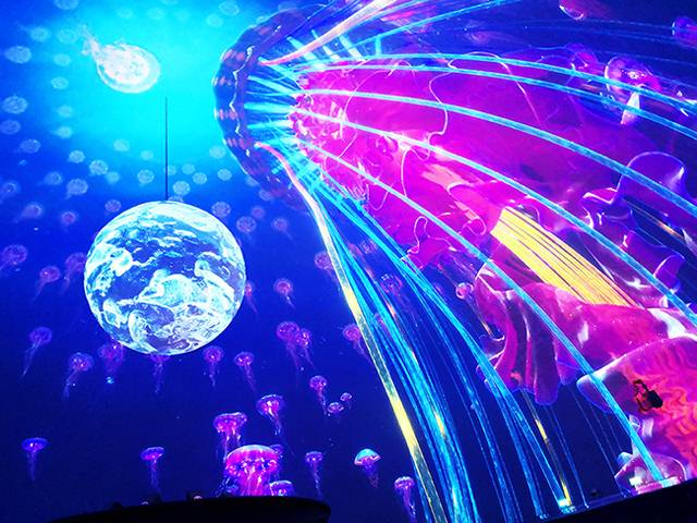 上海海昌海洋公园,球幕影院玩出新创意